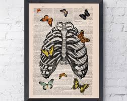 summer sale butterfly in rib cage collage upcycled
