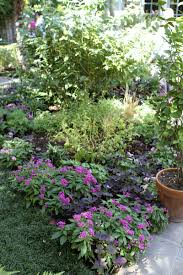 square foot gardening flowers dallas fruit and vegetable grower flowers