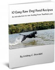 raw dog food diet for dogs pros and cons thatmutt com a dog blog