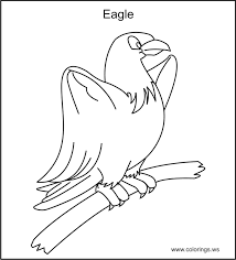 11 free printable birds coloring pages images