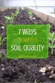 how to amend clay soil clay soil gardening and clay