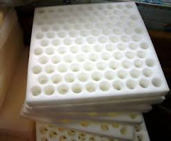 quail egg shipping supplies foam crate cushion hatching eggs 105