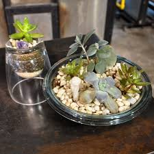 succulent planters mother s day gift guide succulent planters by willie haynes third