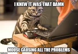 Computer Problems Meme - cat computer imgflip