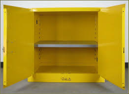 Yellow Storage Cabinet Flammable Storage Cabinet In Your House Home Decor And Furniture