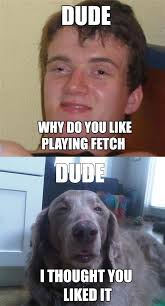 High Meme - really high guy meme plays fetch with really stoned dog