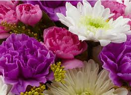 All About Flowers - about us and business hours all about flowers bellingham wa 98225