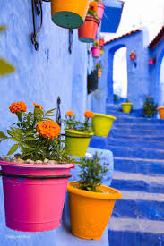 Morocco Blue City by Enveloped In Blue In The Moroccan Blue City Chefchaouen Wide Awake