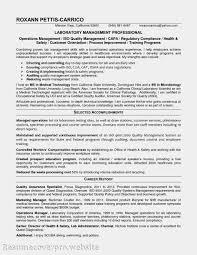 Energy Analyst Resume Marketing Analyst Resume Sle 28 Images Computer Programmer