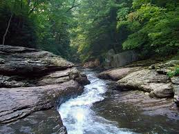 Delaware wild swimming images Skip the pool splash in these 10 natural swimming holes instead jpg