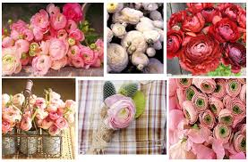 pianese flowers cheaper peony replacement flowers for your wedding and garden