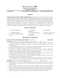 Pmo Resume Sample by Project Management Resume Sample Sample Resumes