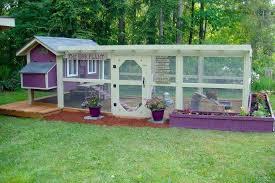 Home Design Garden Architecture Blog Magazine Backyard Chickens How To Design Your Chicken Run Home Design