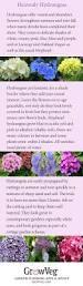 351 best seaside gardens images on pinterest gardens