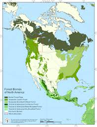 World Biomes Map by Food Forest Resources