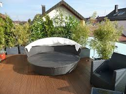 pflanzen f r balkon kirschlorbeer balkon home design magazine www memoriauitoto