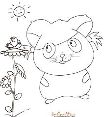 coloriage hamster et le papillon tête à modeler