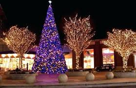 outdoor tree image of outdoor lights ideas for trees