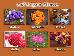 inexpensive weddings inexpensive wedding flowers for fall inexpensive flowers