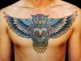 collection of 25 clean owl sugar skull on stomach