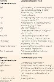 algorithmic approach to the interpretation of renal biopsy