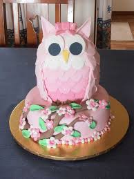 owl cake 3d owl cake recipe with the whoot