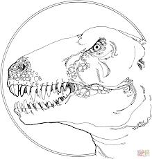 tyrannosaurus t rex ausmalbilder free coloring pages