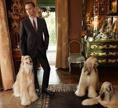 afghan hound mandarin 59 best stars u0026 their dogs images on pinterest animals