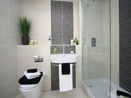 Master Suite Bathroom Ideas En Suite Shower Room Ideas Small Ensuite Master Bedroom