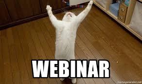 Webinar Meme - webinar praise the lord cat meme generator