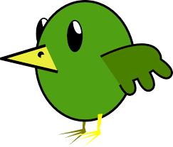 animated bird