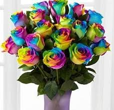 Cheap Flowers Online Rainbow Roses Bouquet With Free Vase Flowers Delivery 4 U