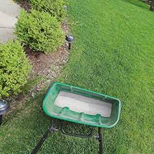 lawn care jupiter florida pest bee removal 33469