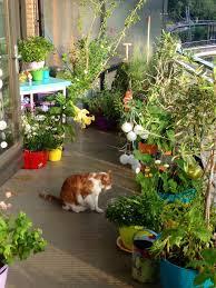 167 best balcony garden images on pinterest balcony gardening