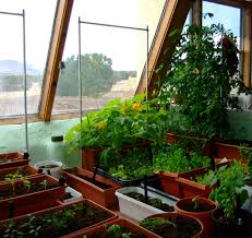 home interior garden hydroponic vegetable gardening indoors home outdoor decoration
