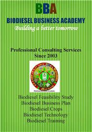 jatropha wikipedia jatropha biodiesel business plan