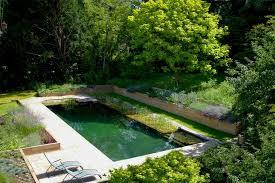 Natural Swimming Pool Beautiful Natural Swimming Pool Designs Gallery Decorating
