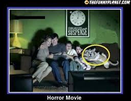 Epic Movie Meme - epic family watching a horror movie thefunnyplanet funny