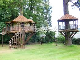 tree house quiz howstuffworks the ultimate idolza