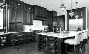 Frosted Glass Inserts For Kitchen Cabinet Doors Kitchen Cabinets Black Glass Inserts For Kitchen Cabinets