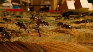 ant man marvel u0027s heist film fxguide