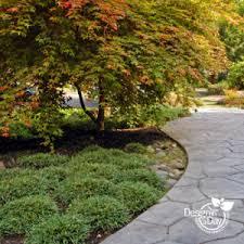 modern landscape design plants for portland landscape design in