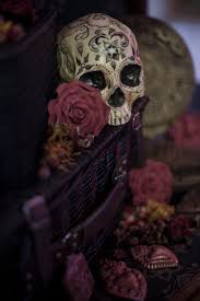 photos the calavera cabinet u2014 avm curiosities