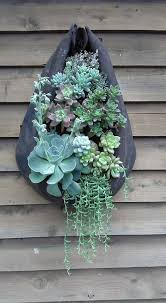 Vertical Succulent Garden Indoor - horse collar decoration ideas google search wreath madness