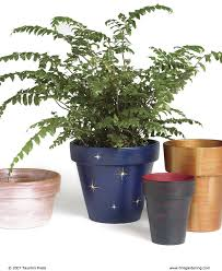 Painting Garden Pots Ideas Painting Clay Pots Finegardening