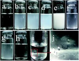 preparation properties and in vivo pharmacokinetic study of drug