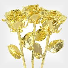 dipped in gold 3 real 18 past present future roses dipped in gold is a