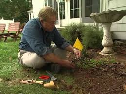 how to design garden lighting how to design and install low voltage outdoor lighting youtube