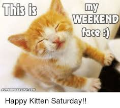 Happy Kitten Meme - this super freecint com my weekend face happy kitten saturday