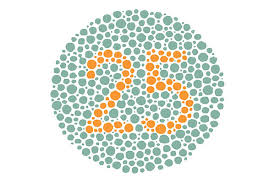 Blue Green Color Blindness Living With Color Blindness Silverstein Eye Centers
